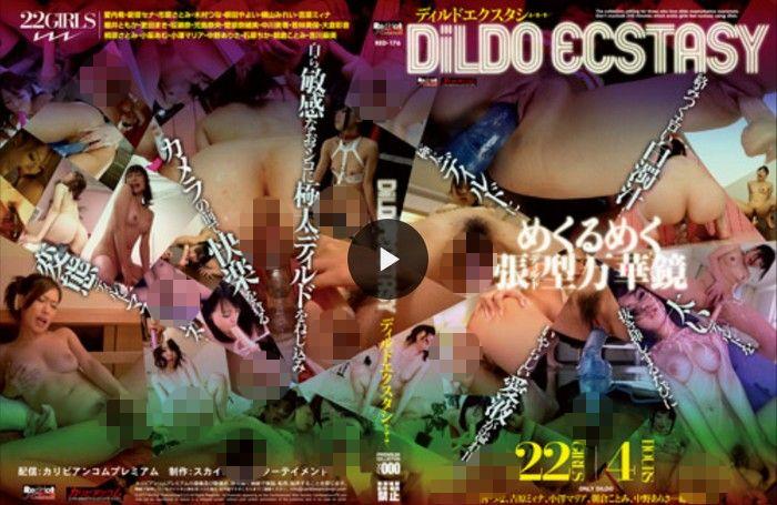 DiLDO ECSTASY - ディルドエクスタシー